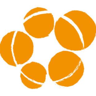 Tellerrand Logo